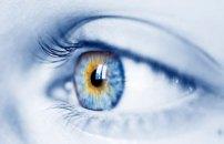 artificial-retina-1