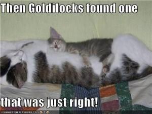Goldilocksjustright