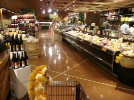 earth-fare-on-hendersonville-rd-asheville-nc-cheese-005